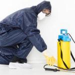 Desinfektionsdienstleistungen IHS