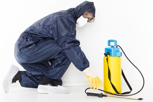 Desinfektionsdienstleistungen - IHS - Ingenieurbüro für Hygieneplanung und Schädlingbekämpfung