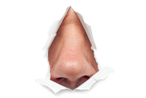 Geruchsneutralisation mit Ozongeneratoren