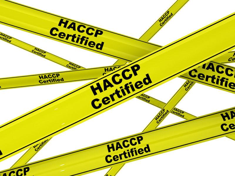 HACCP Konzepte IHS