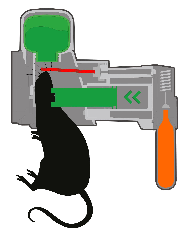 Giftfreie - Mechanische Ratten- und Mäusefalle